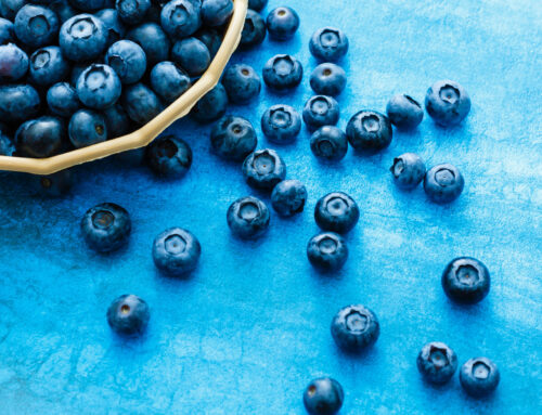 IQF Blueberry Report 2020